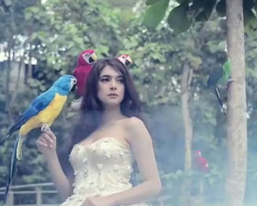 video nabila syakieb burung